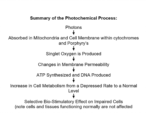 Summary of the Photochemical Process   Class IV Laser Therapy   LeReve Spinal Care